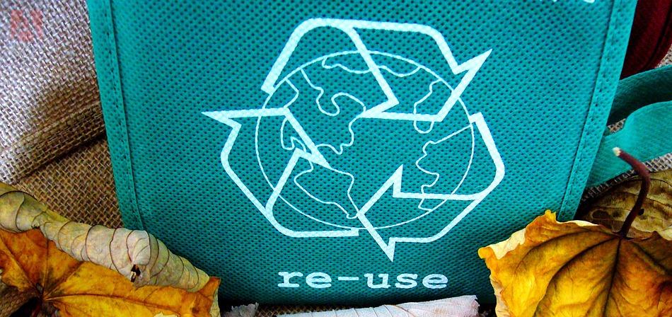 ¿Puede la IA ayudarnos a salvar el medio ambiente?