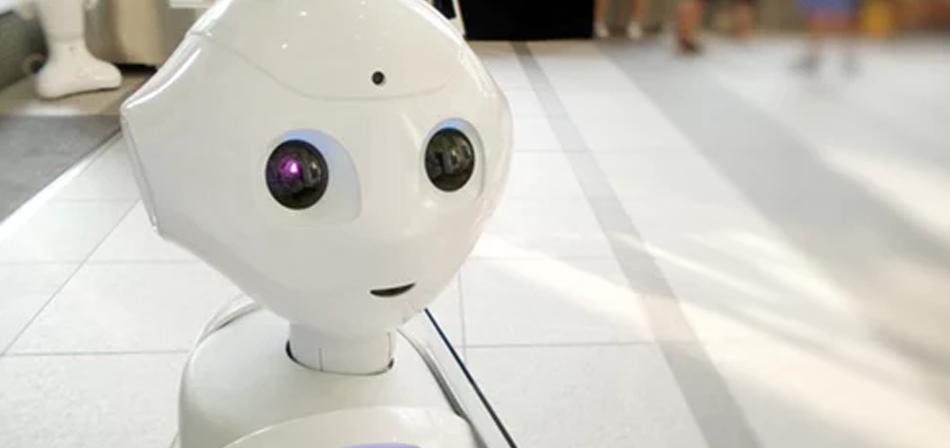 publicar imagen ¿Puede la IA ayudarnos a salvar el medio ambiente Avances ambientales de la IA - ¿Puede la IA ayudarnos a salvar el medio ambiente?