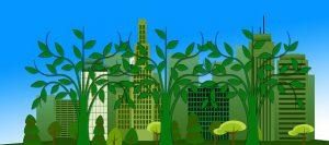 Protección del medio ambiente 300x133 - Diez formas de involucrarse más con el medio ambiente a pequeña
