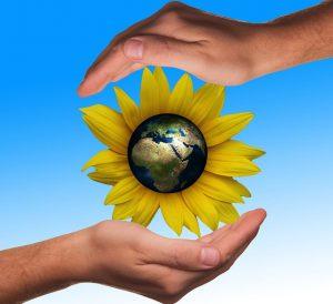 flor 300x274 - Diez formas de involucrarse más con el medio ambiente a pequeña