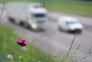 la carretera 300x203 - Diez formas de involucrarse más con el medio ambiente a pequeña